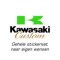 kawasaki_custom